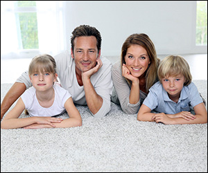 professional carpet upholstery cleansing birmingham carpet cleaning services birmingham in. Black Bedroom Furniture Sets. Home Design Ideas