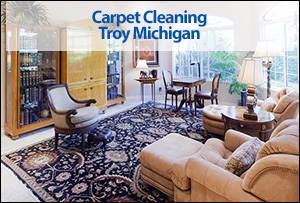 Carpet Cleaning Troy Michigan