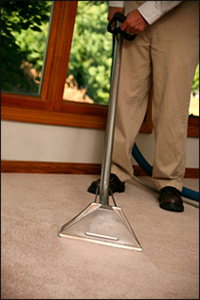 Carpet Cleaning Oakland County Michigan