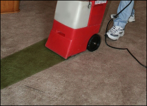 Carpet Dyeing Oakland County Michigan