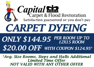 Capital Carpet Coupon Ferndale Wyoming