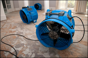Water Damage Clean Up and Repair Equipment